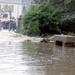 1996.08  Sandgate Flood (39).JPG
