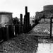 Castle Close 12-1950 (02).jpg