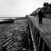 008 Marine Walk 21-12-1956.jpg